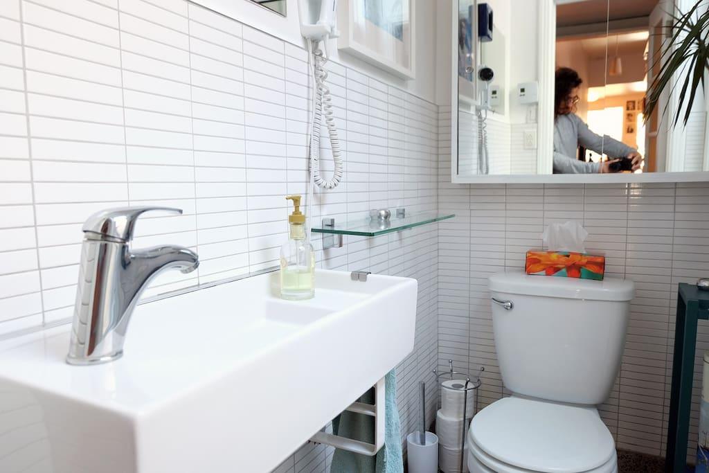 Magnifique appartement 2 ch plateau mt royal for Appart meuble montreal