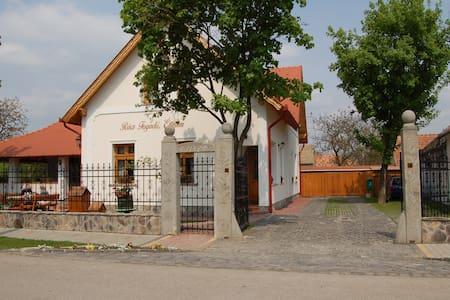 The tip of the Island Szentendre  - Kisoroszi