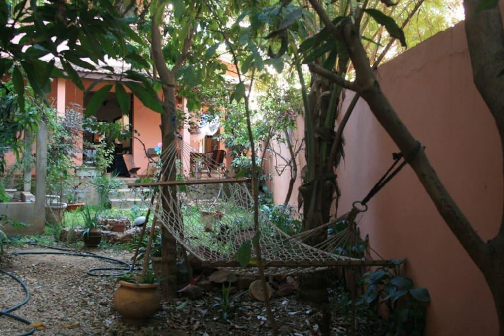Vue sur le jardin bed breakfasts for rent in dakar for Le jardin dakar