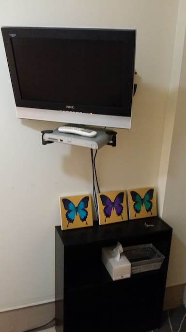 TV with Foxtel cable channels