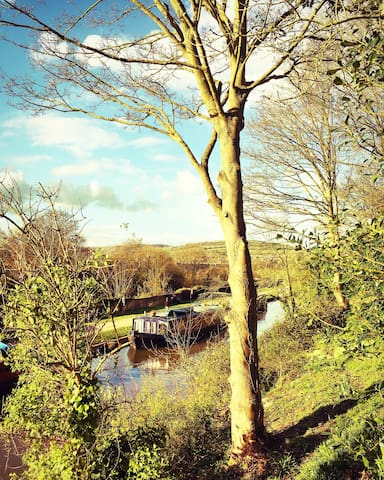 The Kennet And Avon Canal From The Wild Wood In The Garden
