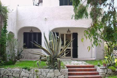 Villa fronte mare | piano terra - Tortoreto Lido