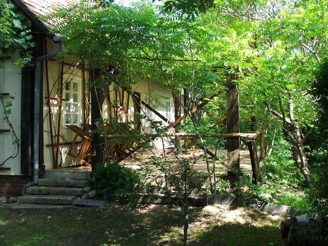 Typisches Spreewaldhaus (aH)