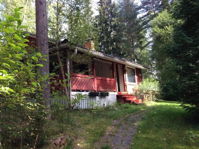 Cozy house on the lake with sauna, Salo island