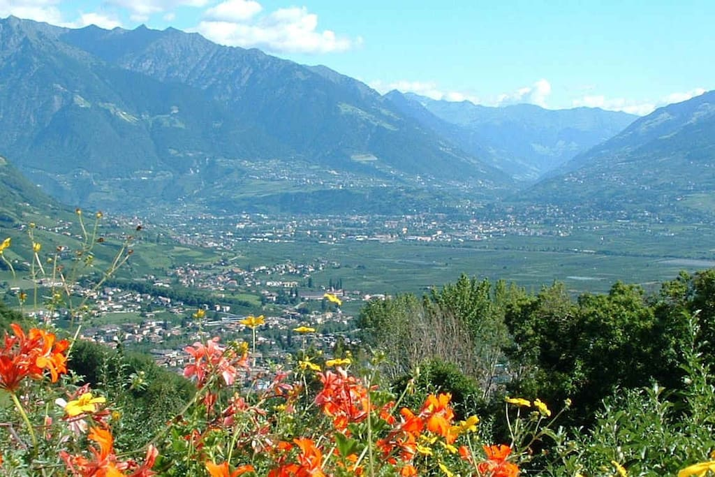 Panoramablick vom Niederhof