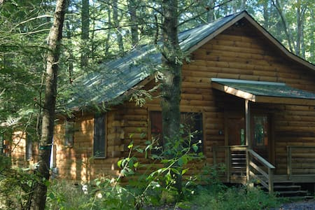 Peaceful Log Cabin 8 ft from Creek  - Burnsville