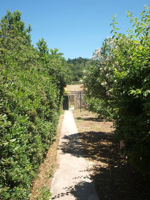 Pathway from the Entrance to the Property Towards the Inner Courtyard Gate