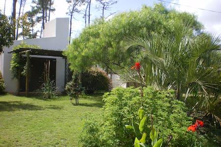 Casas de verano Kaliste - La Paloma