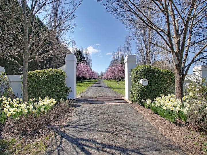 Willowood - magnificent family home