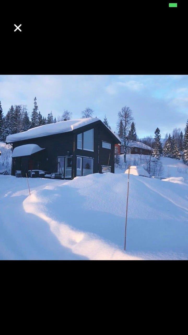 Flott hytte i Bjørgan