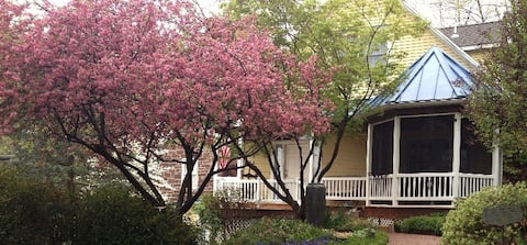 Front walk in the spring