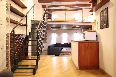 Trastevere Enchanting Loft - 罗马 - 公寓