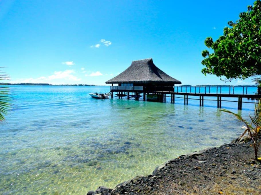 The black pearl luxury over water bungalow bungalows for Bungalows flotantes en bora bora