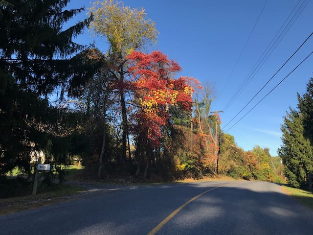 Norton Church Road in the Fall.