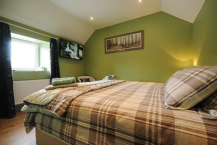 Central House (Double/Twin En-Suite Room)