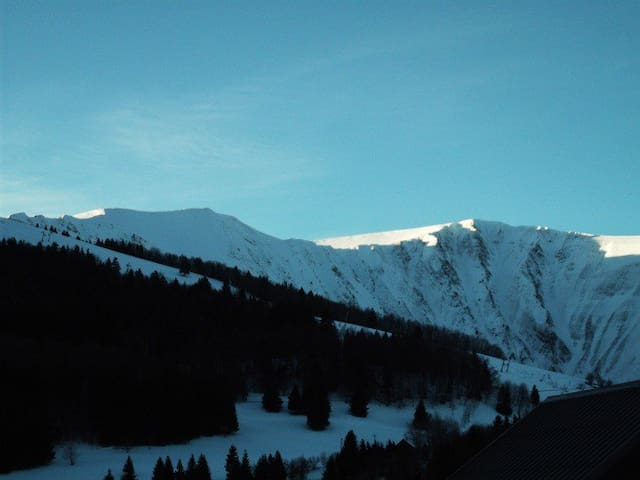 location de montagne alpe grd serre - Isère - Flat