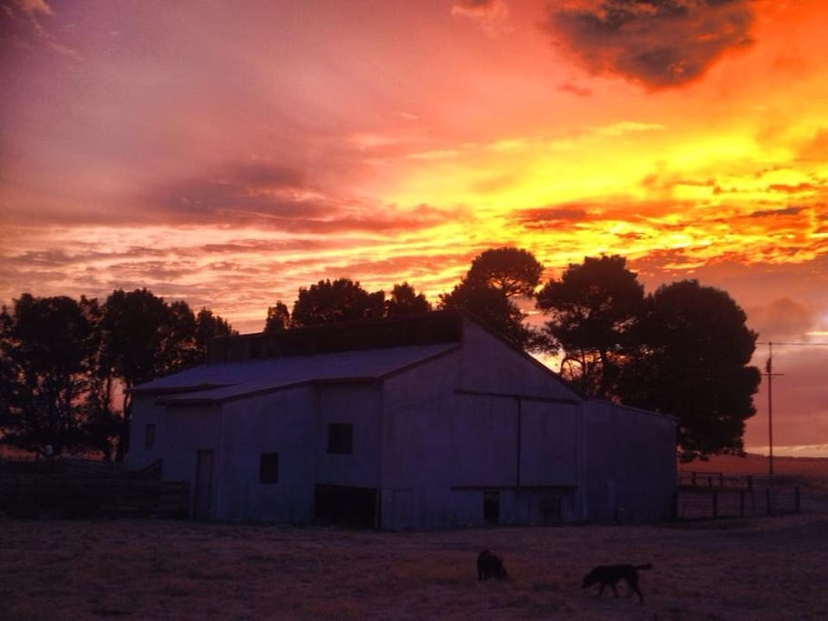 Here is our shearing shed, with an awesome sunset... We really do see some amazing sunsets and sunrises too.