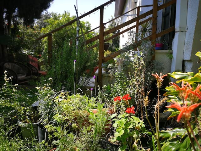 Relax in a peaceful, colourful cottage & garden