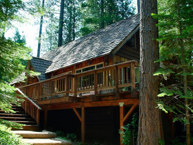 Peaceful Cabin Bordering Nat'l Forest