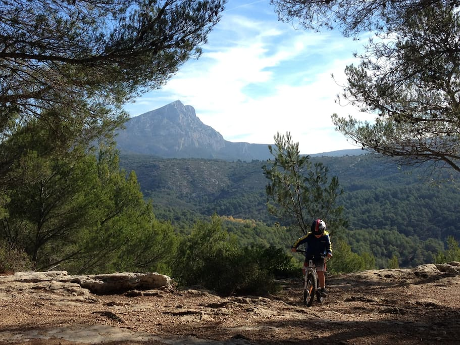 One of the amazing views from Bibemus plateau, 10 minutes walk from the house