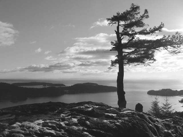 View from Soames Hill, Gibsons