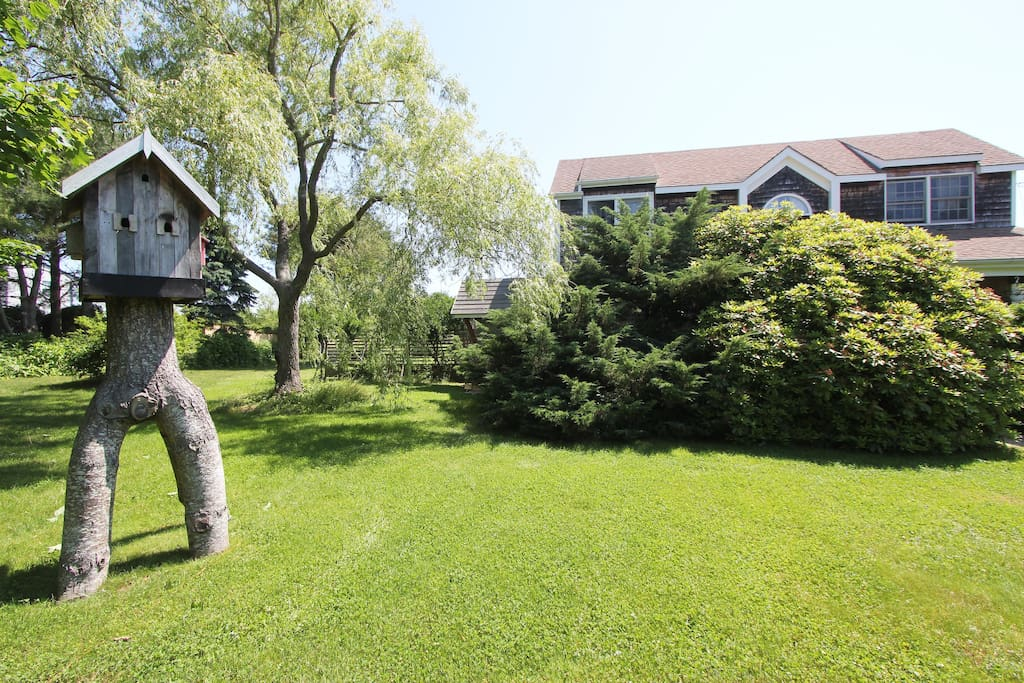 front garden with bird house
