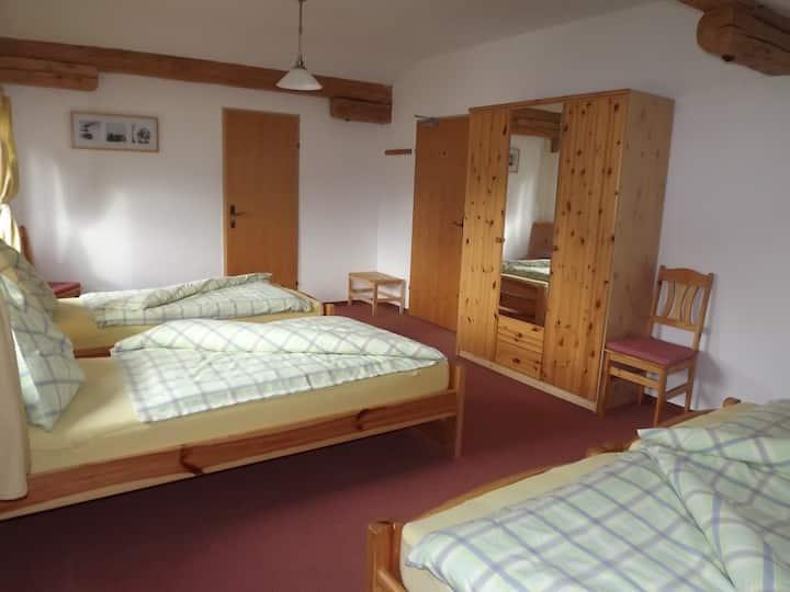 Chalet Kammleitn - Family room
