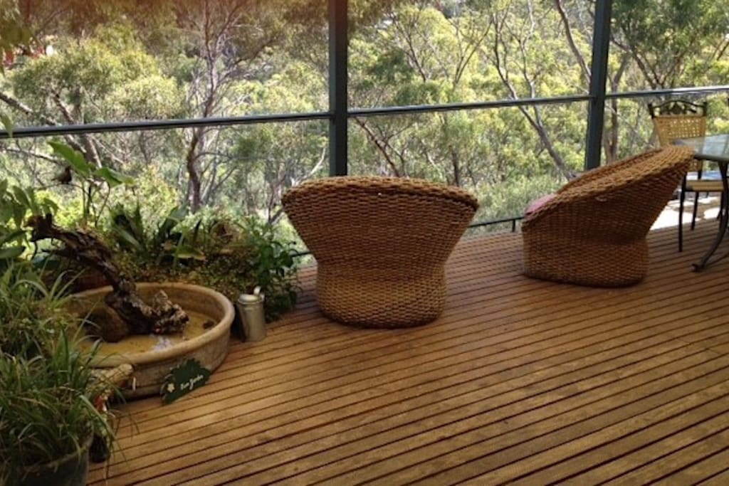 A lovely place to sit, summer or winter, to gaze into the treetops.