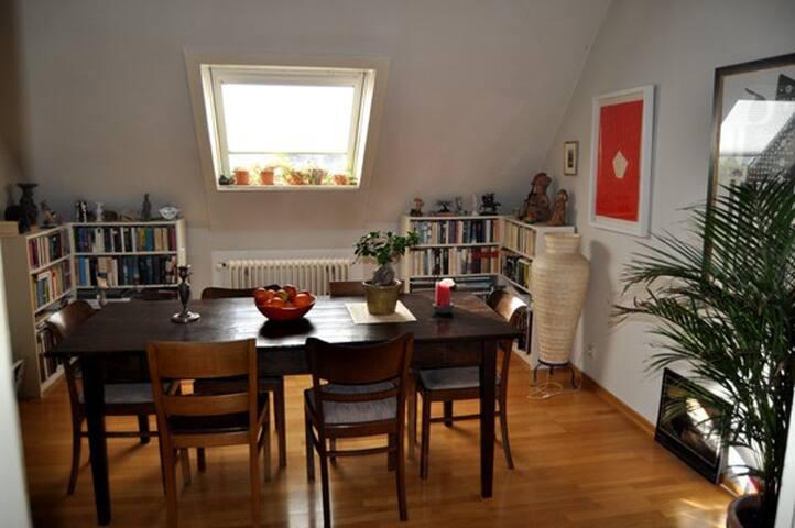 Helle, ruhige Künstlerwohnung - Hannover - Apartment