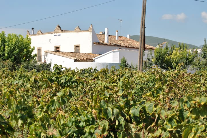 Artist Hotel vineyards Barcelona - Torrelles de Foix - House