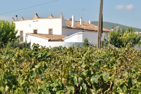 Artist Hotel vineyards Barcelona - Torrelles de Foix - Dom