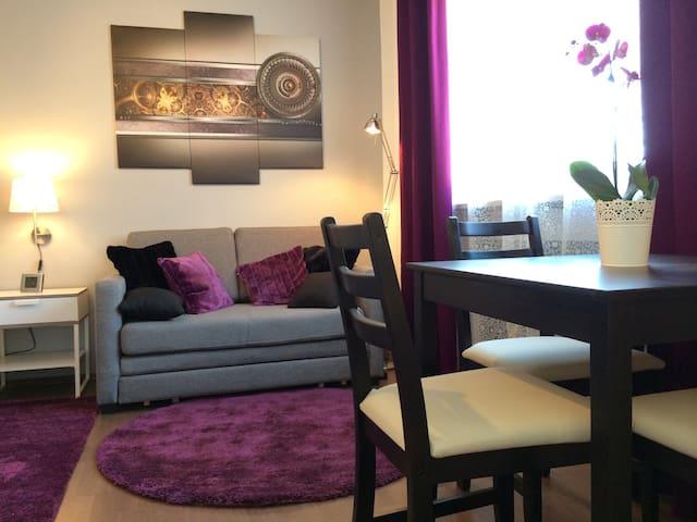 Ausziehsofa 1,25 m x 1,90 m / pull-out sofa
