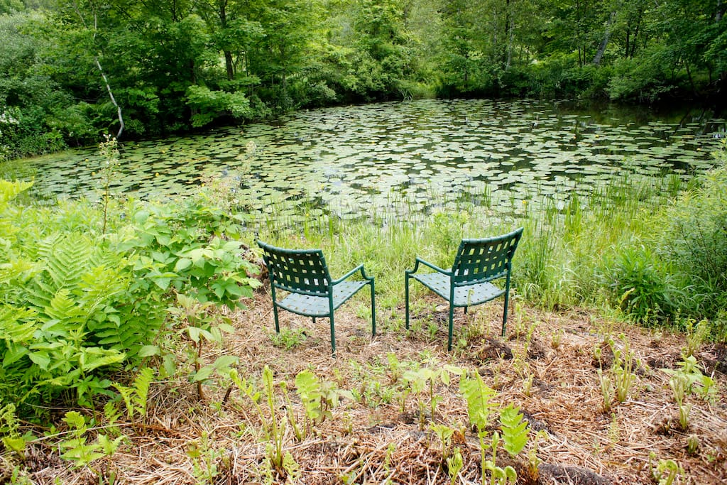Two chairs by the pond