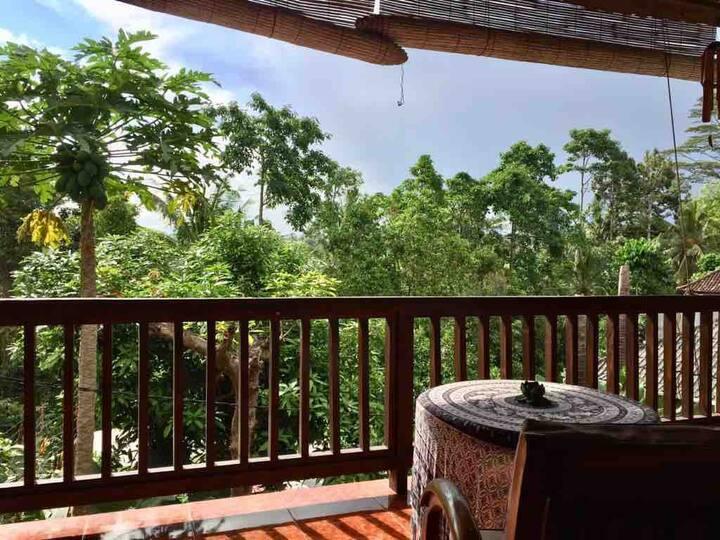 Private house w/ jungle view, free Wifi, Kitchen