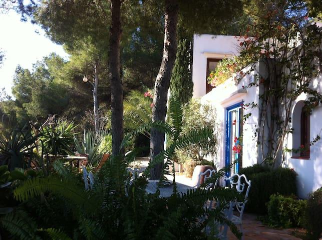 GREAT HOUSE WITH SEA VIEWS IN SA CARROCA, IBIZA