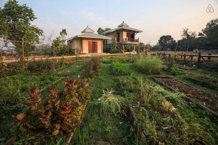 Peaceful Farmstay in a quiet area of Chiang Mai