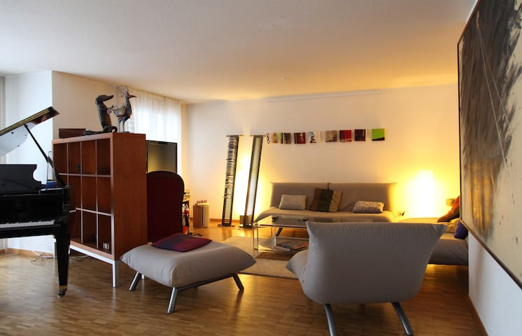 Very spacious apartment in Geneva! - Genève - Appartement