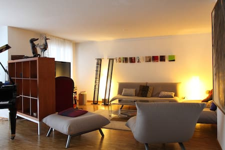 Very spacious apartment in Geneva! - 日內瓦