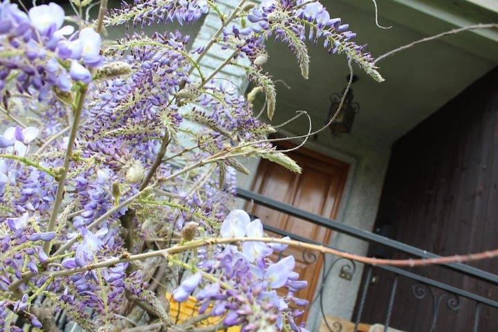 La Casa di Titti e Remo (Cod.CITRA 009055-LT-0038)