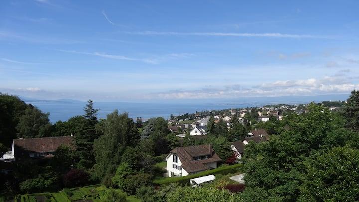 Villa - Splendide vue Lac et montagne - jardin