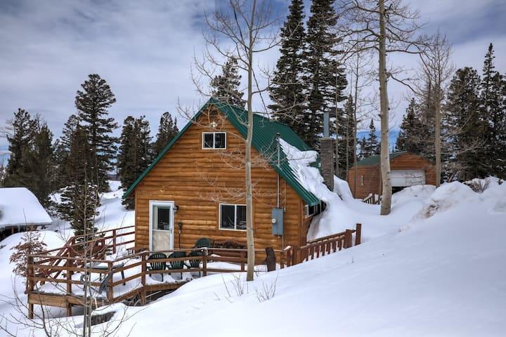 Rustic Ski Cabin