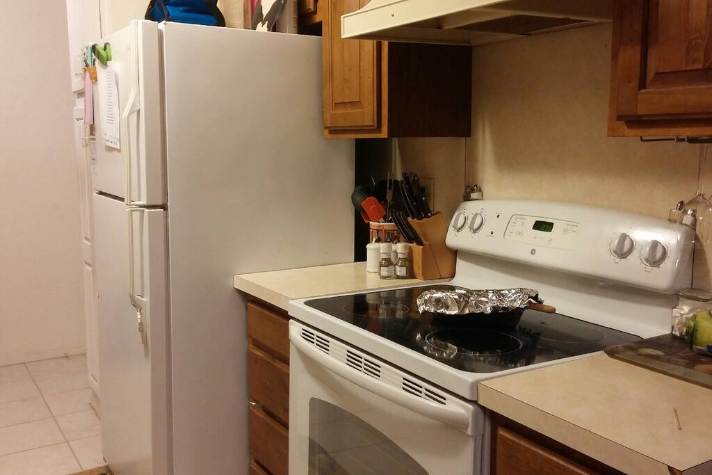 Other half of the kitchen showing electric stove, refrigerator w/ pantry next to frig.