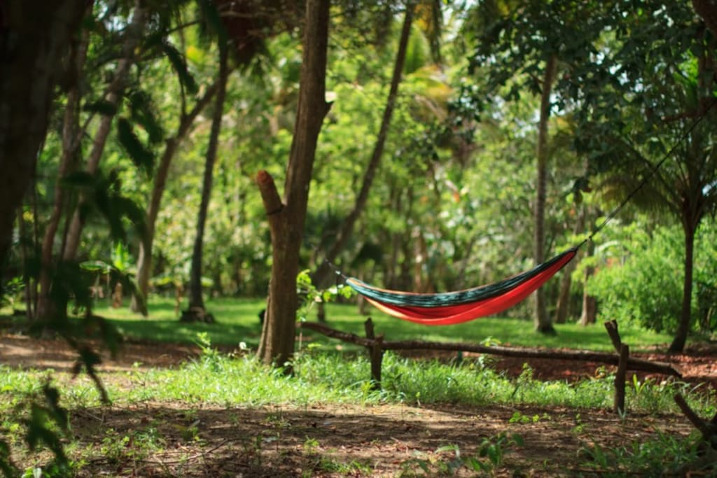 Put up your hammock anywhere you want!