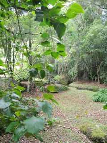 Suíte trio próx. Pedra da Macela e 24km de Paraty - Cunha - Apartament