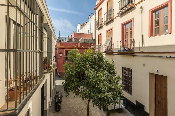 Bonito apartamento en el barrio de La Macarena