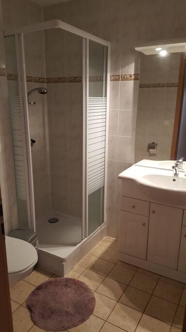 Une salle d'eau et à votre disposition en face de la chambre avec douche, wc et lavabo avec grand miroir.