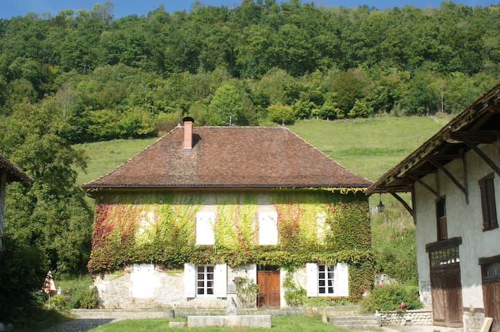 Great Domain in the countryside - Saint-Geoire-en-Valdaine - House