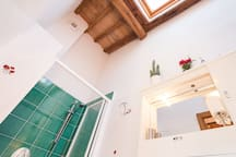 bathroom with shower and cieling window.