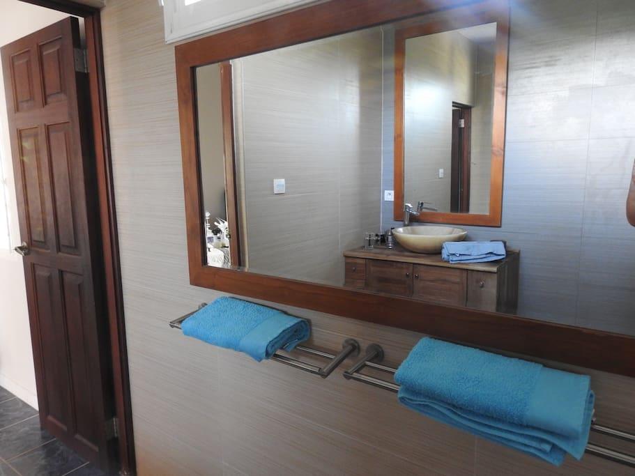 salle de bain communiquant dans les 2 chambres