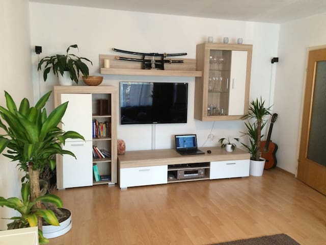 homely and quiet flat in cologne - Kolonia - Apartament